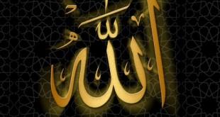 بالصور عجائب القبر التي لايعرفها احد allah 098 310x165