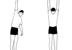 صوره وصفات تساعد على زيادة الطول