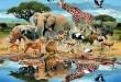 بالصور معلومات غريبة عن الحيوانات ddd69497132aab4cf5d3c024cf6597d7 110x75
