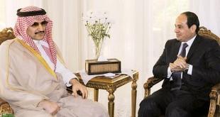 صوره استثمارات الوليد مع عبدالفتاح السيسي