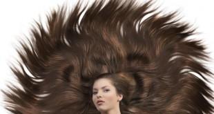بالصور اعشاب لتكثيف وتطويل الشعر hair long good care  310x165
