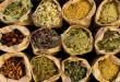بالصور فوائد الاعشاب الطبية للجسم herbs 2 110x75