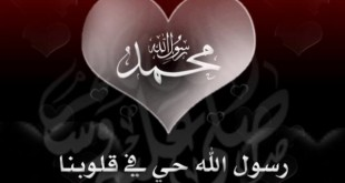 صورة اجمل شعر في الاسلام , شعر عن الفخر بالاسلام