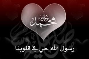صوره اجمل شعر في الاسلام شعر عن الفخر بالاسلام
