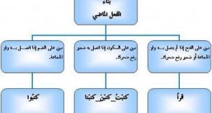 صورة احوال بناء الفعل الماضي , قواعد اللغة العربية من نحو وصرف وشرح مفصل