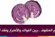 بالصور فوائد نبات الملفوف للتخسيس red cabbage221.jpg 110x75