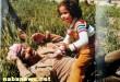 بالصور اخر اخبار بنات صدام حسين sadam 110x75