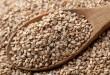 بالصور فوائد واضرار بذور السمسم sesame seeds 110x75