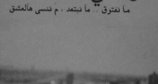 صورة رمزيات حب بدون حقوق