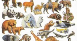صوره كيف يوظف الانسان بعض الحيوانات في حياته