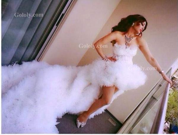 صوره فساتين زفاف هيفاء وهبي