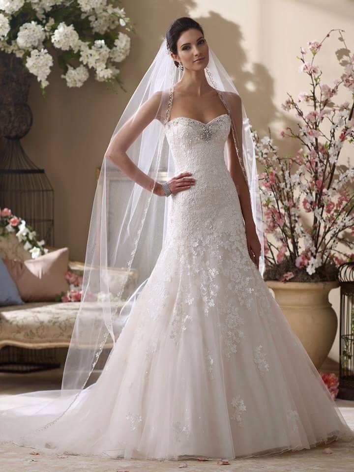صوره فساتين اعراس جميلة جدا
