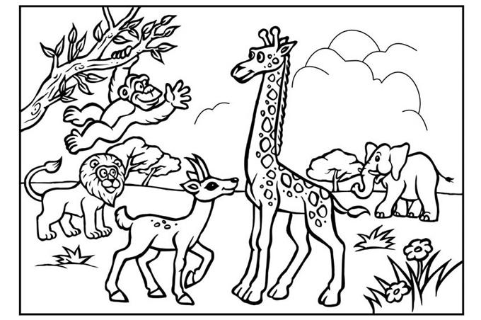 صوره رسومات اطفال للتلوين حيوانات