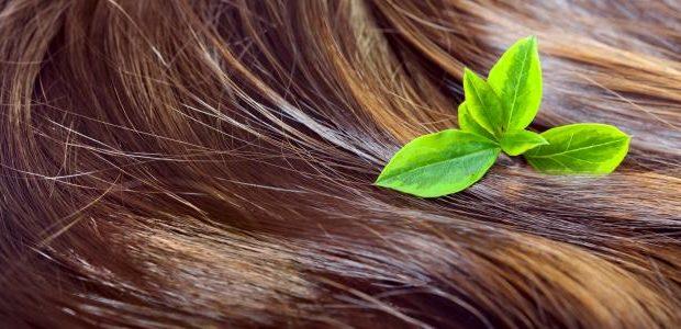 بالصور طريقة تنعيم الشعر الخشن للاطفال 20160616 1017 620x300