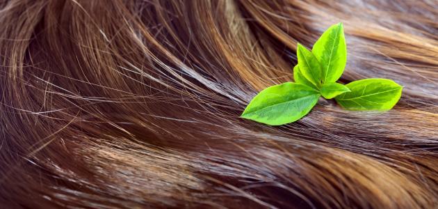 صوره طريقة تنعيم الشعر الخشن للاطفال