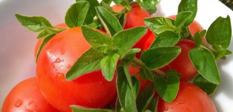 صوره تفسير الطماطم في الحلم