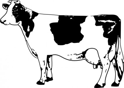 صور تفسير حلم البقرة السوداء والبيضاء