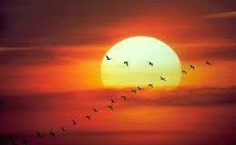 صوره احسن غروب شمس في العالم
