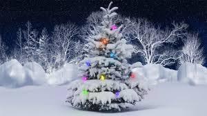 بالصور شجرة راس السنة الكريسماس 20160618 702