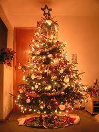 بالصور شجرة راس السنة الكريسماس 20160618 705