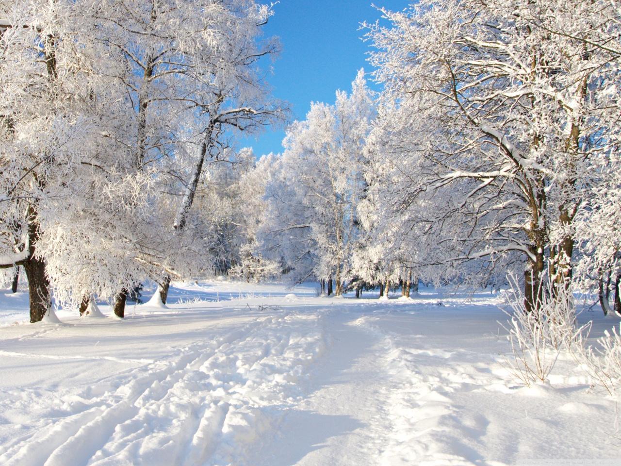 صوره موضوع عن فصل الشتاء قصير صاحب الظلال والجمال