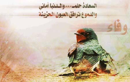 صوره اجمل كلام عن الاخلاص والوفاء