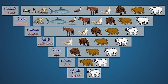 صوره علم تصنيف الكائنات الحية