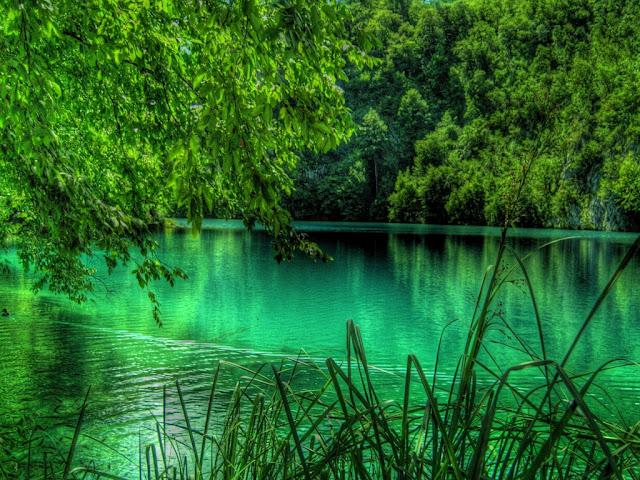 صوره صور للطبيعة جذابة جدا