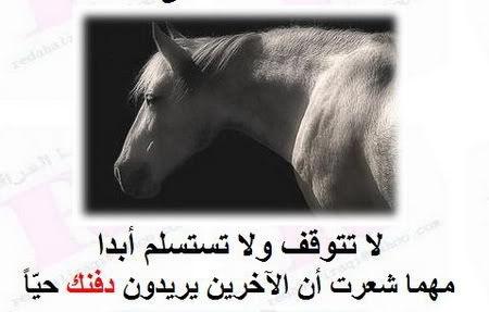 صوره قصة الحصان الذي وقع في البئر