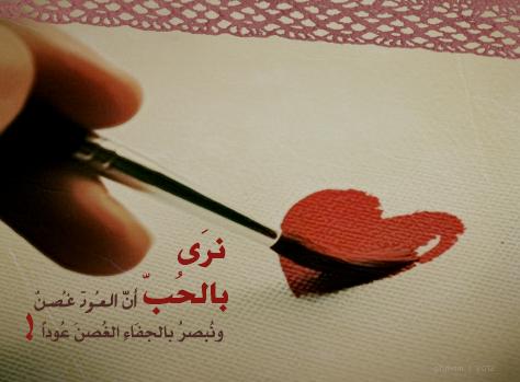 بالصور كلام في الحب مترجم بالانجليزية 20160623 7