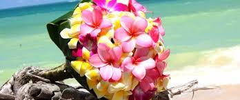 بالصور انواع الزهور ومعلومات عنها 20160624 1060