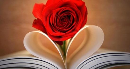 صوره تفسير الاحلام الورد الاحمر