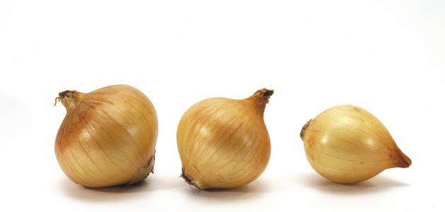 ما هُو فوائد البصل