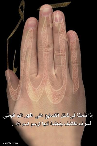 بالصور هل تعلم ان اسم الله مكتوب داخل جسمك 20160624 1789