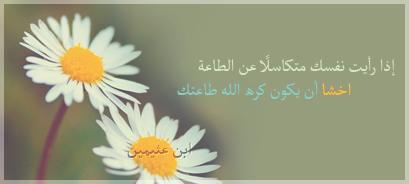 http://vb.elmstba.com/imgcache/almstba.com_1345160788_250.jpg