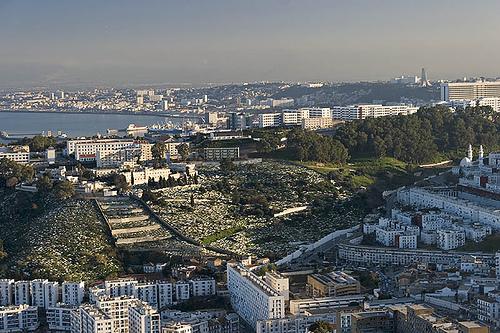 صوره اجمل بلد في العالم الجزائر