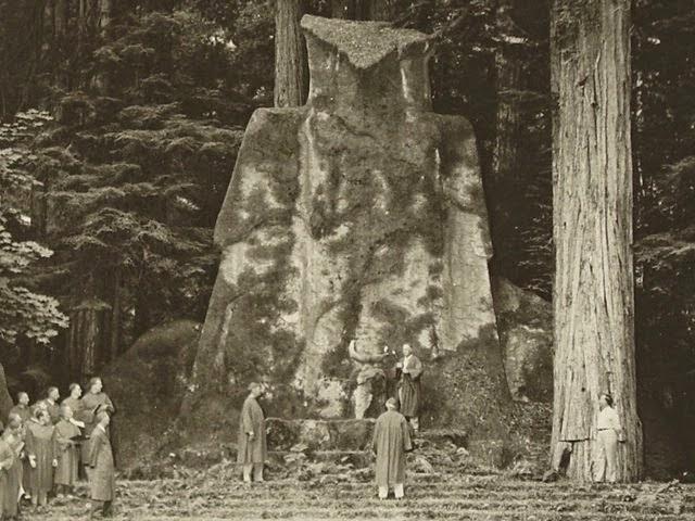 صوره الغابة البوهيمية في كاليفورنيا
