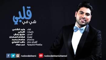 صوره اغنيه وليد الشامي وينك