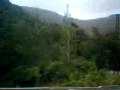 صوره غابات الفرلق في سوريا