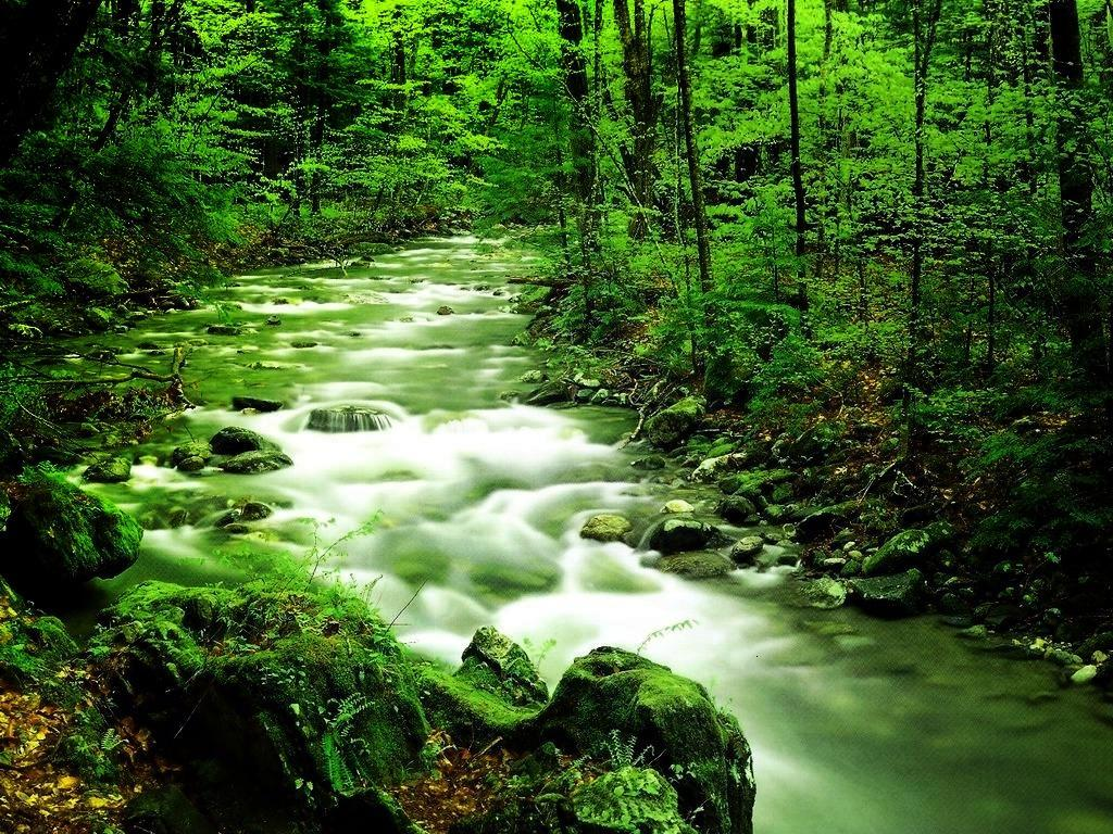 اجمل مناظر طبيعيه فِي العالم 2017 صور مناظر طبيعية خضراءَ خَلفيات خلابة جميلة جداً 2017 للفيس بوك