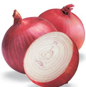 صوره ماهي فوائد البصل