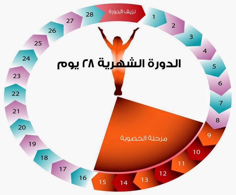 بالصور ايام التبويض بعد الدورة بكم يوم 20160626 286