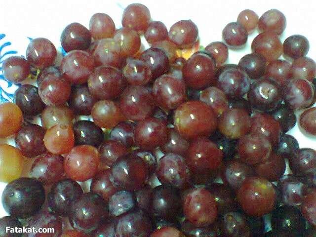 صور طريقة عمل مربى العنب