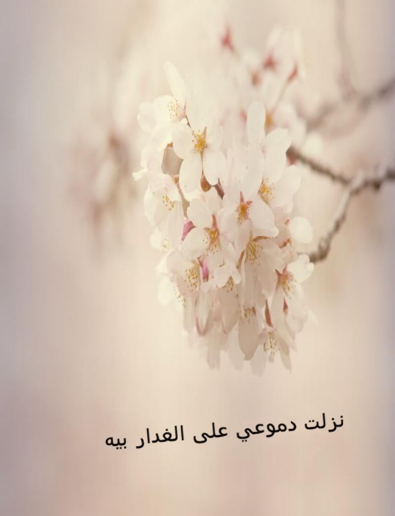 صوره اسماء مستعارة حزينة للشات