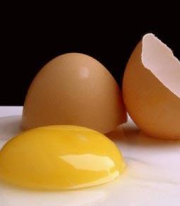صور ما هى فوائد صفار البيض