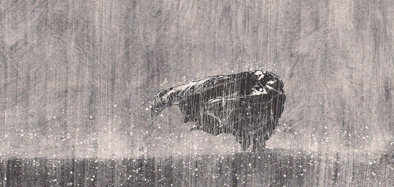 صوره بحث عن المطر
