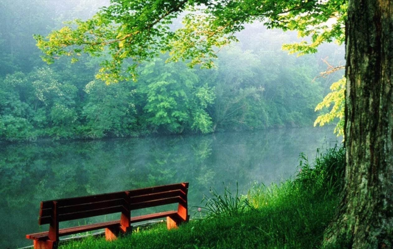 صوره تحميل صور الطبيعة