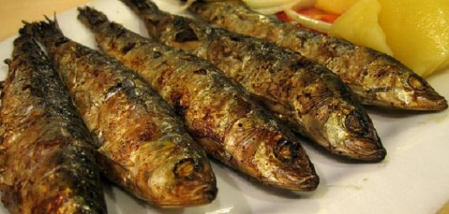 طريقَة  عمل سمك ألسردين