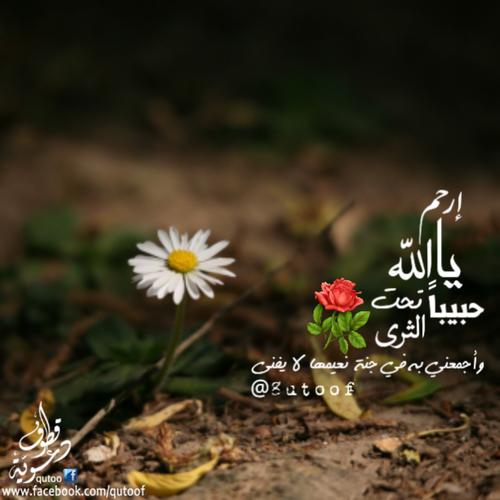 صوره اجمل مسجات اسلاميه
