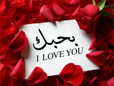 صوره اجمل كلمات حب و غرام